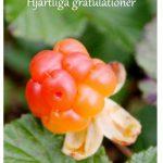 gratulation-2